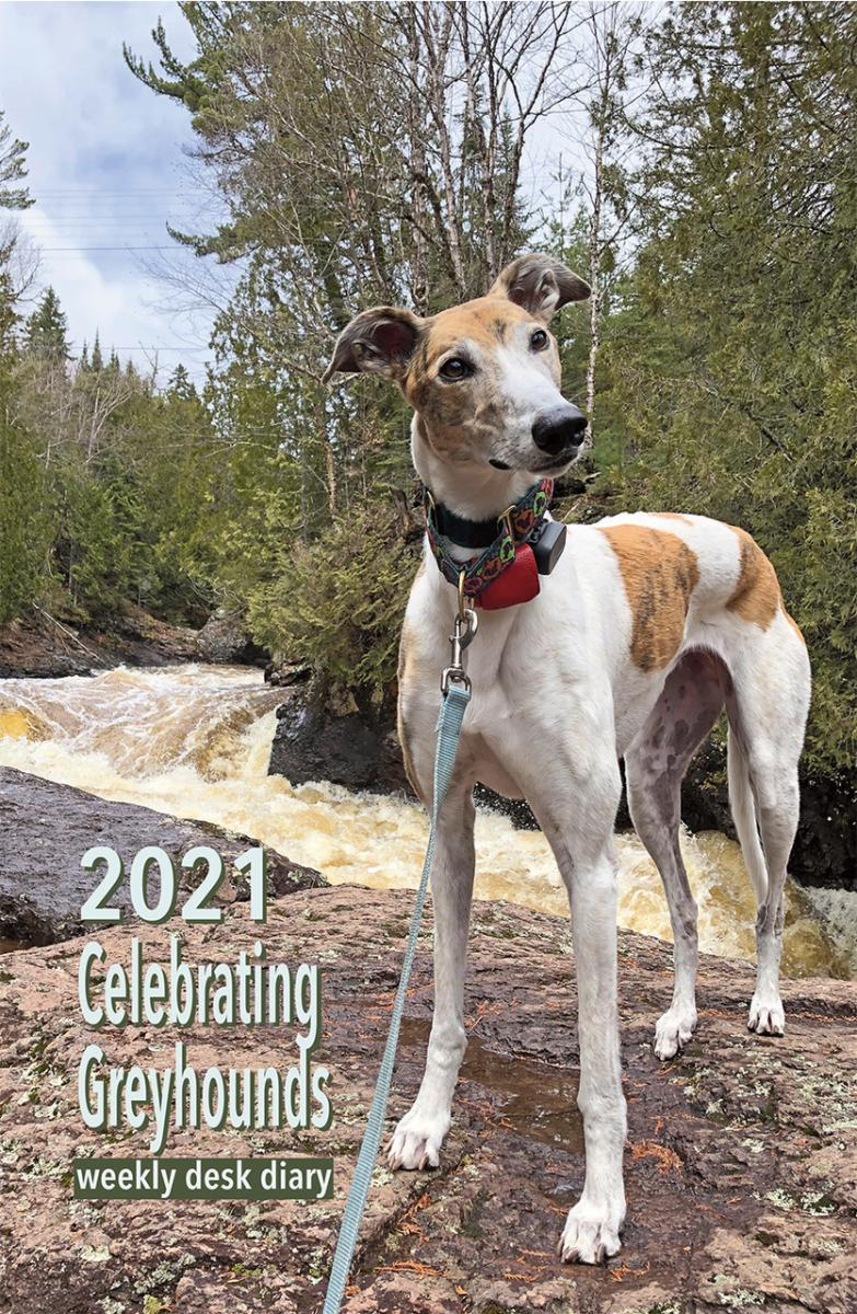 2019 Celebrating Greyhounds Desk Calendar